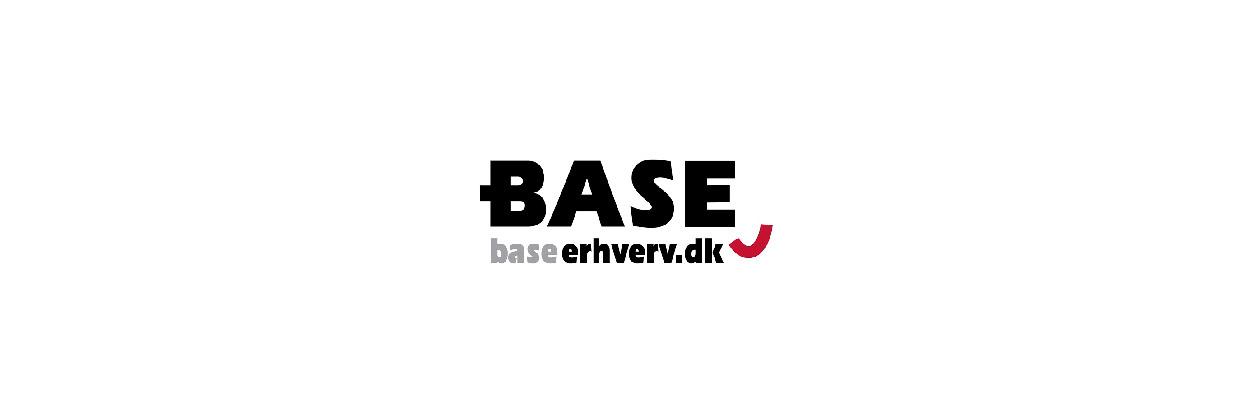 BaseErhverv